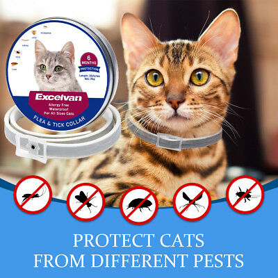 New 25 inches flea and tick collar for cats 6 Months Protection Hypoallergenic