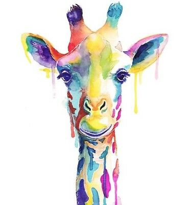 """Large close up Colourful Stag wall art printed on canvas 30/'/' X 30"""" solid frame"""