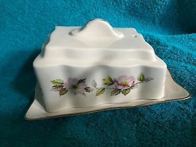 RARE Vtg Cheese / Butter Dish Old Foley James Kent Englnd Wild Roses Yellow Buds