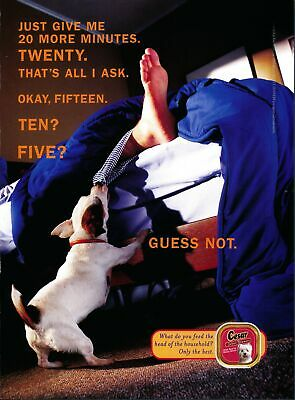 Print Ad~1999~Cesar~Dog Food~Trying to Wake Up Owner from Bed~G500