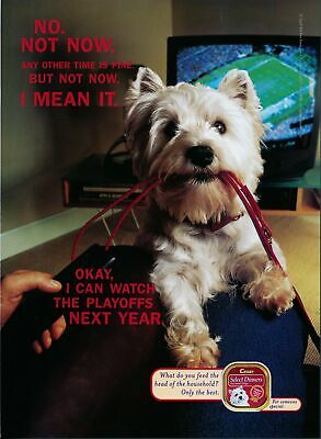 Print Ad~1998~Cesar Select Dinner Dog Food~Go for Walk~Watch Playoffs~G600