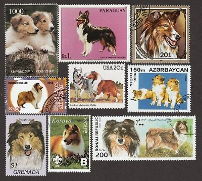 COLLIE ** Int'l Dog Postage Stamp Collection ** Unique Gift **