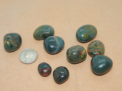 Bloodstone tumbled stones 1/4 pound from India (13747)