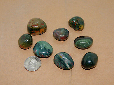 Bloodstone tumbled stones 1/4 pound from India (13771)