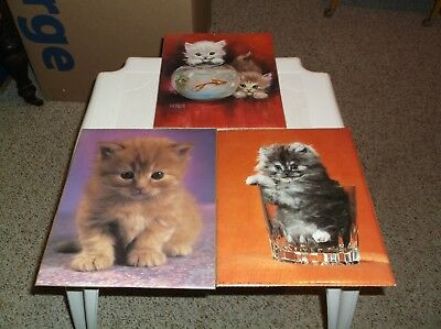 Animal Kitty Kitten Or Cat Litho Poster & Prints Lot Of 3 In Very Good Condition