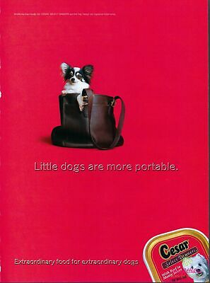 Print Ad~1999~Cesar Select Dog Food~Papillon~Advertisement~H300