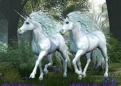 Two White Unicorns Fairytale Girls Bedroom Giant Poster - A4 A3 A2 A1 Sizes