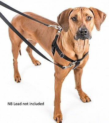"Freedom no pull harness by 2 Hounds Design ""Power steering for dogs"""
