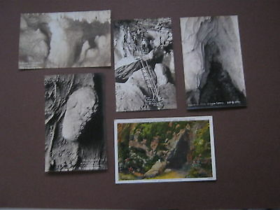 Lot of Five Oregon Caves Postcards, Real Post Cards, Patterson