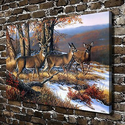North Ridge Whitetails Deer Animal Painting HD Print on Canvas Wall Art Picture