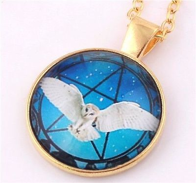 NEW GOLD OWL MAGIC PENTAGRAM WITCH PAGAN WICCA NIGHT GOTH Chain Glass Necklace