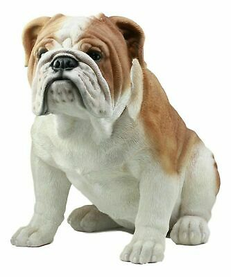 "Sitting English Bulldog Statue 14.5""Tall Fine Pedigree Dog Breed Pet Collection"