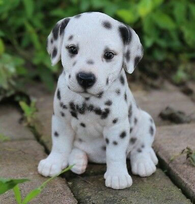 Sitting DALMATIAN Puppy Dog - Life Like Figurine Statue Home/ Garden NEW