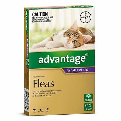 Advantage for Large Cats over 4 kg - 4 Pack