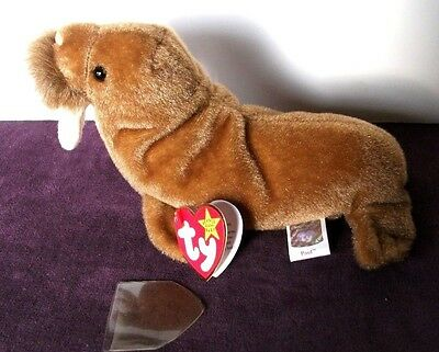 Ty Beanie Babies--Paul The Walrus  In Mint Condition-1999 P.e. Retired-- Plush