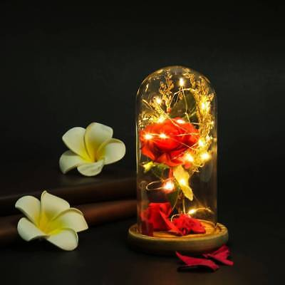 Beauty & The Beast Enchanted Rose Glass Dome LED Lighted Wedding Home Decor Gift