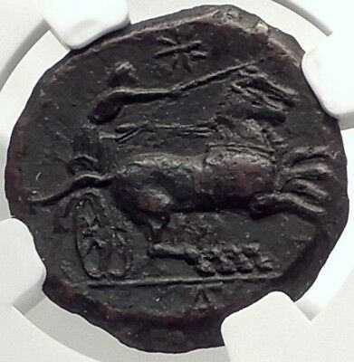 SYRACUSE in SICILY Authentic Ancient RARE R1 Greek Coin w PERSEPHONE NGC i70146