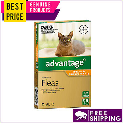 ADVANTAGE for Cats Upto 4 Kg ORANGE 6 Doses Best Flea Treatment by Bayer
