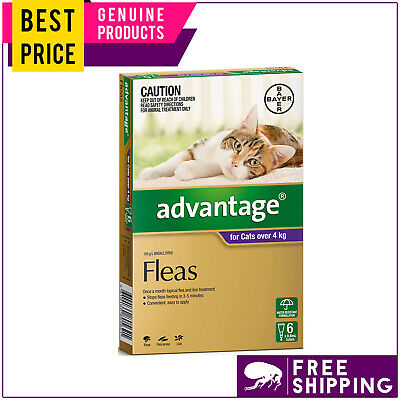 ADVANTAGE for Cats Over 4 Kg PURPLE 6 Doses + FREE 2 Doses Flea Treatment