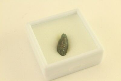 Free Loose Rough Cut Raw Gemstone Great for Jewelry Indian Ocean Apatite 15.1cts