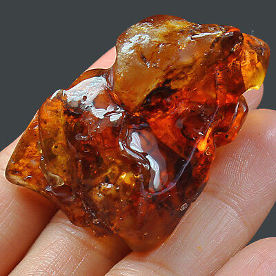 31.2g Natural Baltic FLASHING FLOWER AMBER Inclusion Collectibl​e MSFY632