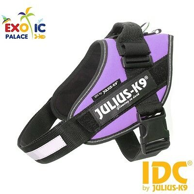 Julius-K9 Idc Powerharness Purple Viola Pettorina Per Cane In Nylon Resistente