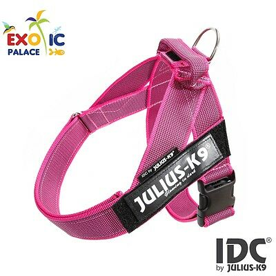Julius-K9 Idc Belt Harness New Pink Gray Pettorina Per Cane In Nylon Resistente