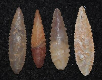 4 nice Sahara Neolithic SERRATED ovate style projectile points