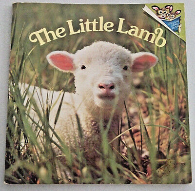 THE LITTLE LAMB Phoebe & Judy Dunn COLOR PHOTOS Pictureback Book RANDOM HOUSE