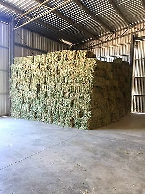 Small square Lucerne hay bales