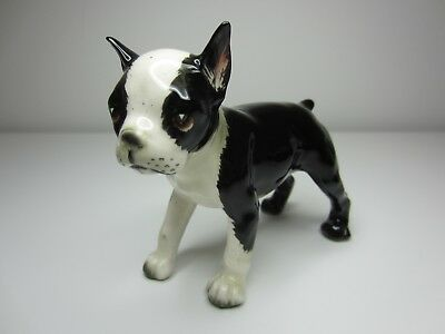 Gorgeous Vintage Boston Terrier - in black and white - Such a cute face!