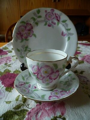 Lovely Vintage Royal Grafton China Trio Tea Cup Saucer Plate Alendale
