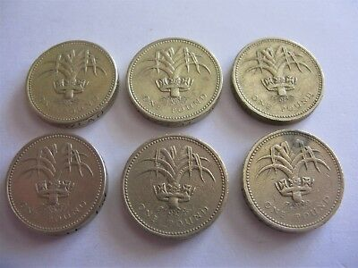 United Kingdom Lot of 6pcs One Pound Commemorative Coin Welsh Leek 1 GBP