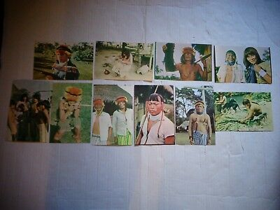 10 Mundo Shuar Postcards Shuar Amazon Indians Ecuador Oriente Amazon Jungle