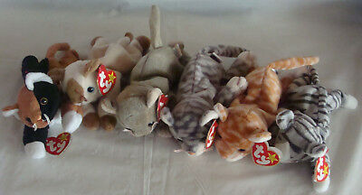 Retired Lot Of Six Assorted Ty Beanie Baby Cats