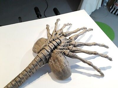 """Aliens Facehugger Lifesize 1/1 45"""" Movie Prop finished Replica"""