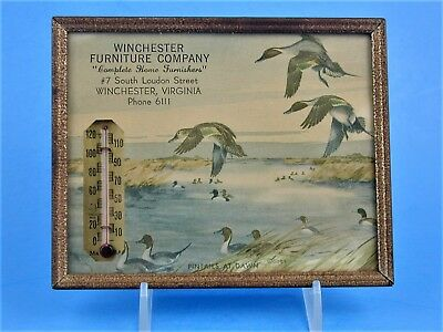 Vintage Advertising Thermometer Winchester Furniture Company Va Pintail Duck Adv