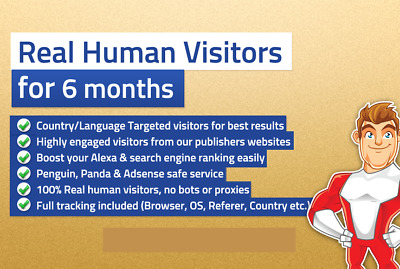 6 Months Unlimited Website Traffic || Adsense Safe || 300 Plus Visits Per Day