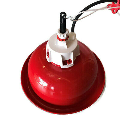 NEW AUTOMATIC BELL DRINKER POULTRY Chicken CHOOK (up to 100 birds) IMPORTED