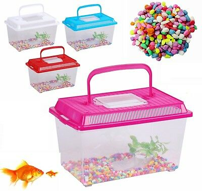Plastic Starter Aquarium Fish Tank Reptile Insect Fish Cage Carry Handle Asorted