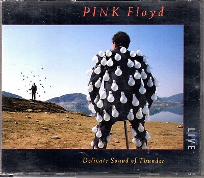 Pink Floyd – Delicate Sound Of Thunder - 2 CDs 1988