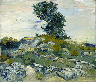 Vincent van Gogh The Rocks Giclee Canvas Print Paintings Poster LARGE SIZE