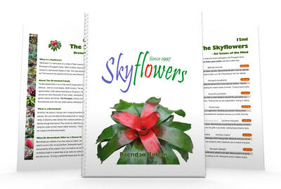 Skyflowers ~ 9th Edition by Skyflowers