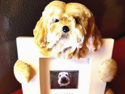 New! Lhasa Apso Picture Frame. 2 left. NEW!