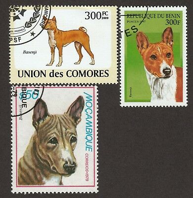BASENJI ** Int'l Dog Postage Stamp Collection **Unique Gift Idea**