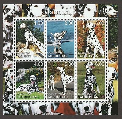 DALMATIAN **Int'l Dog Postage Stamp Collection**Great Gift Idea**