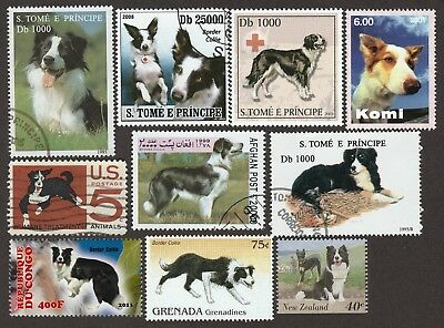 BORDER COLLIE ** Int'l Dog Postage Stamp Collection**Great Gift Idea**