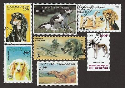 SALUKI **Int'l Dog Postage Stamp Collection ** Unique Gift **