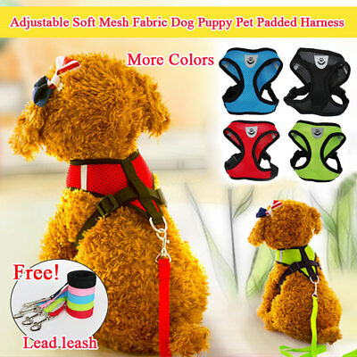 Adjustable Soft Padded Dog Puppy Breathable Air Mesh Comfort Vest Harness + Rope