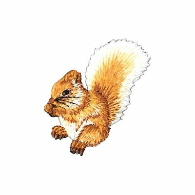 Squirrel (Iron On) Embroidery Applique Patch Sew Iron Badge